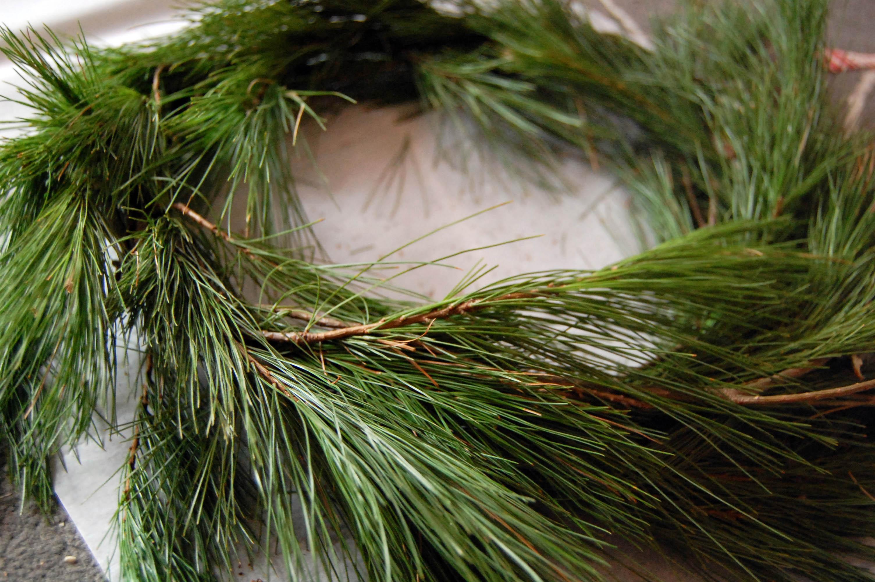 Diy Pine Wreath Tutorial The Happy Homemaker